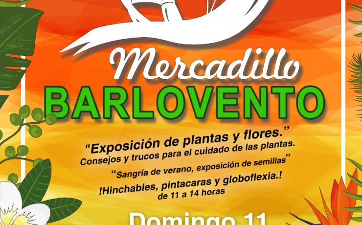 Mercadillo de Inicio de Verano en Barlovento, el próximo 11 de Junio